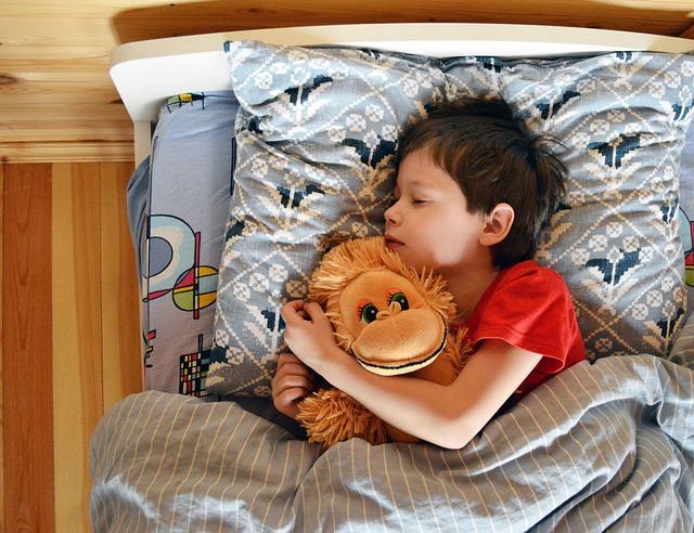 כיצד לרכוש מיטת ילדים?